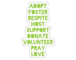 Foster Care Sticker Etsy