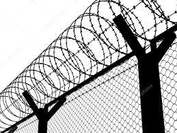 China Galvanized Clips Razor Wire Fencing China Military Razor Barbed Wire Razor Blade Wire Fence