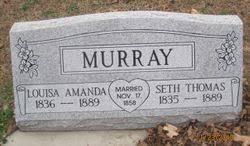 Seth Thomas Murray (1835-1889) - Find A Grave Memorial