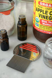 natural remes for lice