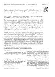 Paleontology and sedimentology of middle Eocene rocks in Lago Argentino  area, Santa Cruz Province, Argentina