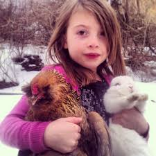 Chickens! - Newman Family Rabbitry