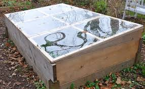 raised bed with a cold frame