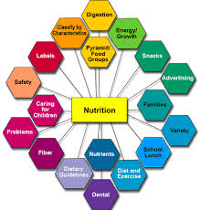 nutrition physiopedia