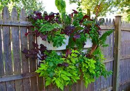 urban gardening ivan estrada properties