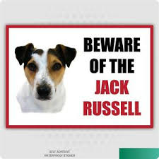 Funny Beware Of The Jack Russell Dog Vinyl Car Van Decal Sticker Pet Lover Ebay