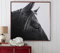 dark horse in profile framed prints by