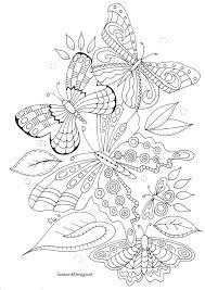 Kleurplaat Voor Volwassenen Butterflies Fosterginger Pinterest
