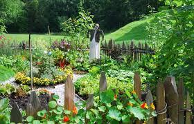 5 tips for a prettier vegetable garden