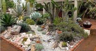 18 succulent garden designs ideas