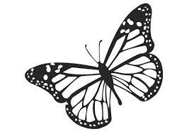 Kleurplaat Vlinder Kleurplaten Monarchvlinder