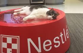 purina banks on pet food science