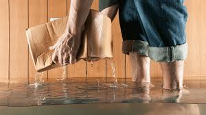 Top 10 Things You Need to Know about Water Damage | Water Damage ...