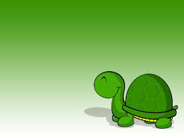 free creative turtle images