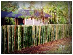 Eden Nature Park A Traveler S Tale