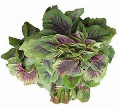 amaranth greens nutrition facts and
