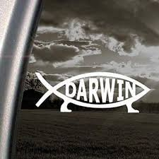 Darwin Fish Sign Decal Evolve Truck Window Sticker Car Laptop Etsy