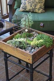 26 mini indoor garden ideas to green
