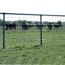 Malaysia Cattle Fencing Panels Metal Fence View Cattle Panel Fence Sx Product Details From Anping County Shunxing Hardware Wire Mesh Co Ltd On Alibaba Com