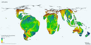 Nature's Heartbeat : Gross Primary Production (GPP) of the biosphere on  land throughout the year [GIF] : MapPorn