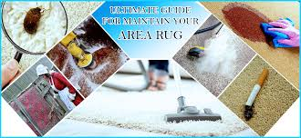 clean and maintain your area rug