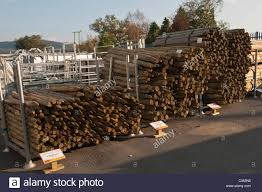 Fenceposts High Resolution Stock Photography And Images Alamy
