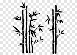 Wall Decal Sticker Tropical Woody Bamboos Flora Bambu Transparent Png