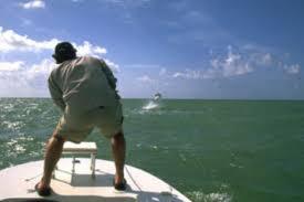 Capt. Duane Baker Fly-Fishing Guide in Florida - Orvis