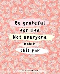 gratitude quotes that spike thankfulness and joy