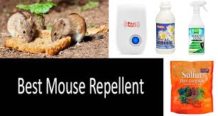 top 5 mouse repellents review er