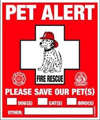 Rescue Rover Pet Safety Window Decal