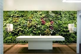winning indoor vertical garden plants