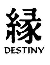 Destiny Kanji Symbol Vinyl Decal
