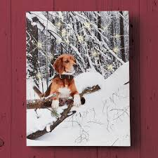 lighted snow day dog canvas wall art
