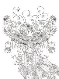 Floral Herten Volwassen Kleurplaat Clipart Afbeelding