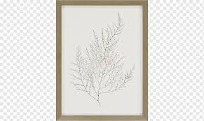 frames wall decal painting mirror