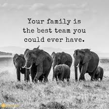 your family is the best team you could ever have quotes for life