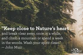 quotes about nature that will make you wanna drop the cell