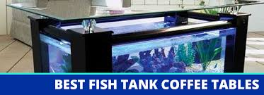 the 3 best fish tank coffee tables