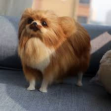 pomeranian dog plush toy