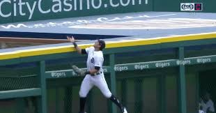 The Tigers Left Fielder Swatted A Fly Ball Over The Fence For The Weirdest Home Run Of The Year