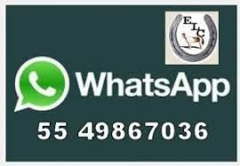 Lienzo Charro de Constituyentes WhatsApp – Lienzo Charro de ...