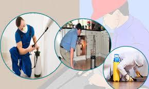 شركة مكافحة حشرات بمكة - أفضل طرق المكافحة بافضل واقوى المبيدات وافضل الاسعار | شركة تنظيف شقق بمكة الايمان كلين 0564825340