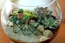miniature gardening work in