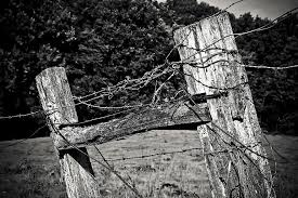 Wood Fence Post Pile Fence Weathered Nature Rustic Wood Fence Wire Wooden Posts Limit Pikist