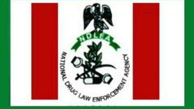 Image result for download ndlea past questions and answers""