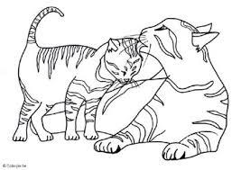 Katten Kleurplaten Kleurplaten Voor Volwassenen