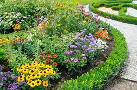 8 ideas for perennial garden plans