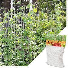 Plant Climbing Net Simple Polyester Net Cucumber Plants Support Vine Netting 1pc Fencing Trellis Gates Aliexpress