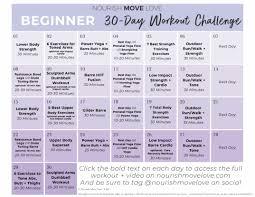 beginner workout plan 30 day workout